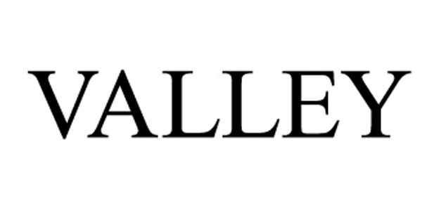 valley-logo